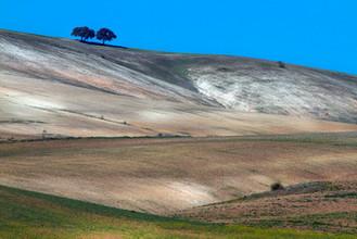 Andalucian farmland