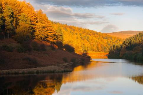 Upper Derwent in autumn