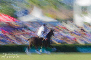 An abstract impression of polo