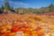 WixRed river rio tinto.jpg