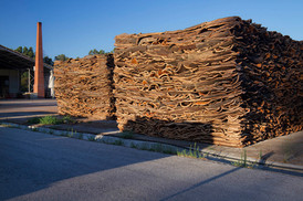 Cork bark stockpiled
