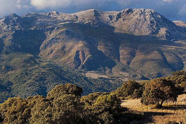 Wix Valle del Guadiaro, Spain.jpg