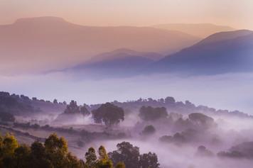 A mist shrouded Valle del Guadiaro, Cortes de la Frontera