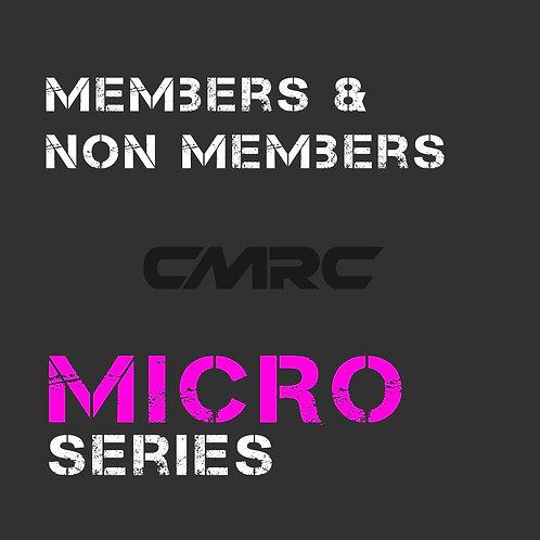 MICRO Series - All Participants