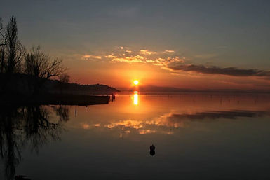 Lake Trasimeno.jpg
