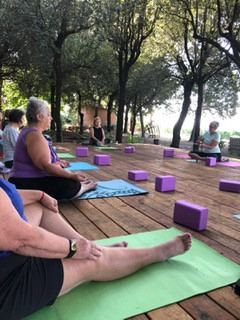 yoga in the olive grove