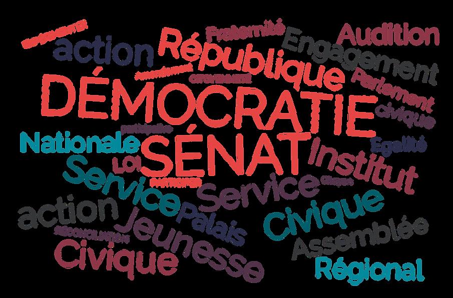Nuage de mots Institut du Sénat