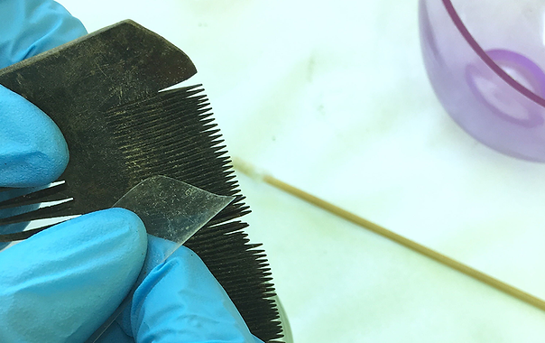 Polyester film cut-offs for cleaning archaeological combs