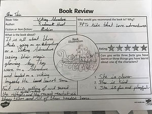 Johans book review.jpeg