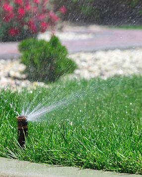 irrigazione-prato-estate-guida-consigli.