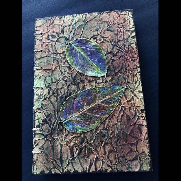 Eco Journal