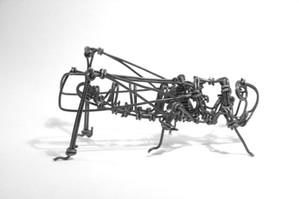 Acrididae : Un petit prototype