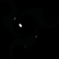 Zoe Logo v4.png