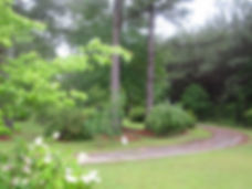 Winding path pic.jpg