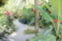 Tierra-de-Sueños-Front-Garden.jpg
