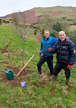 Planting fruit trees with the Aussies.