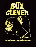 box clever logo.jpg