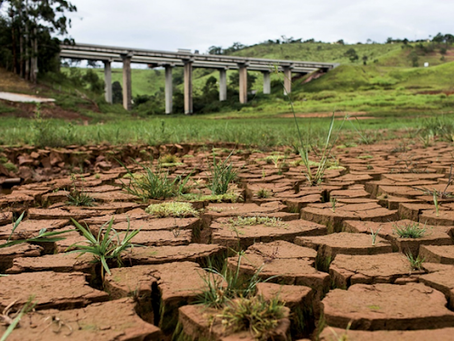 The Drying of a Country – Brazil's Worst Drought in a Century and its Political Roots