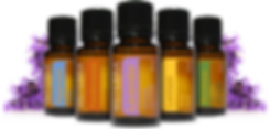 Personal Trainer, Carl Adams, Fundamental Fitness, Milwaukee WI, Sussex WI, Health, Fitness, Nutrition, Exercise, Training, Essential Oils, Nutrition