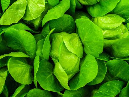 Foods High In Potassium (the Ultimate Ranking of Potassium Density)