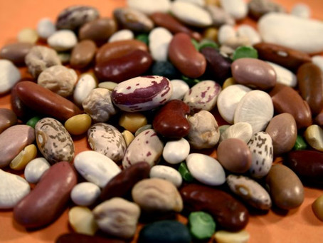 Potassium in Beans (24 Beans Ranked by Potassium Density)