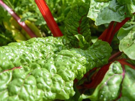 Myricetin in Foods (Myricetin Density of 27 Foods)