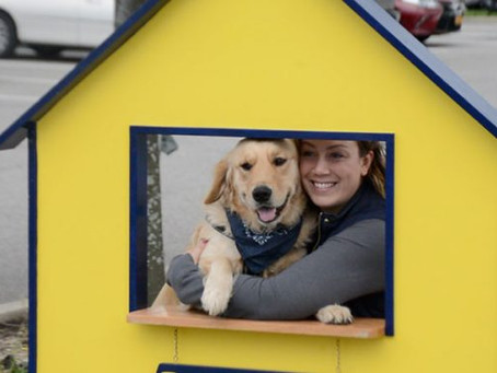 The Osprey: Canine Companions dogfest quadruples goal, raises $4,501