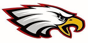 sauk eagle.jpg