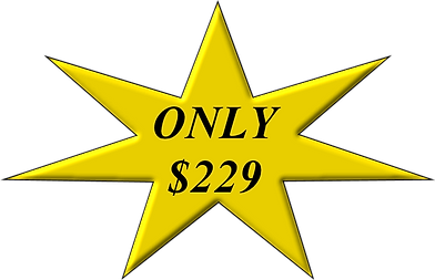 ONLY $229.png