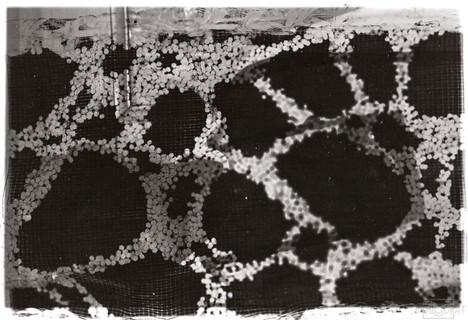 Darkroom Print of Textured Ribbon