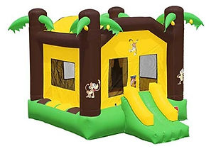 17X13 Jungle Bounce House Rates