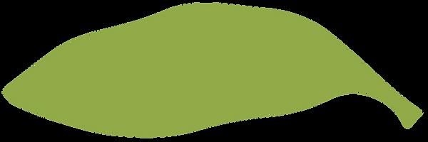planta-13.png