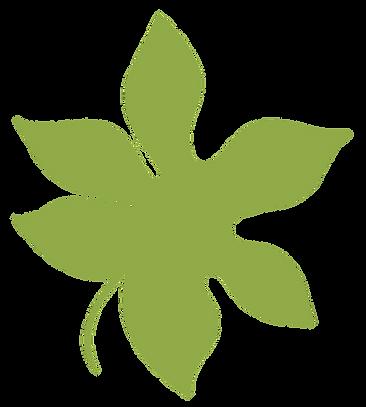 planta-12.png