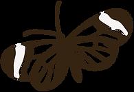 mariposa-greta-oto.png