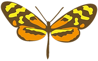 mariposa-heliconius-charithonia.png