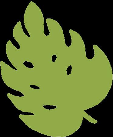 planta-10.png