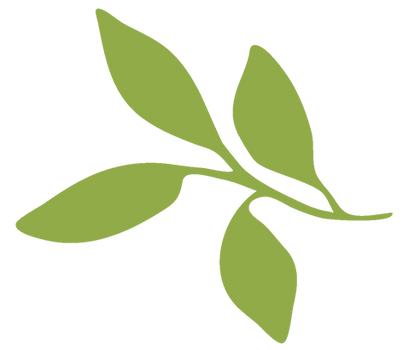 planta-3.png
