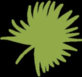 planta-1.png