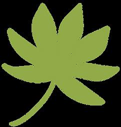 planta-9.png