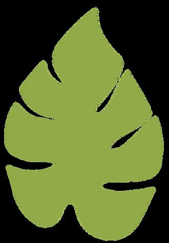 planta-5.png