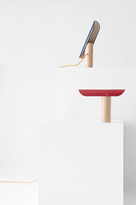 flaviendelbergue_villanoailles_designpar