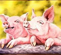 Positive Pigs