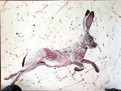 Metallic Rabbit