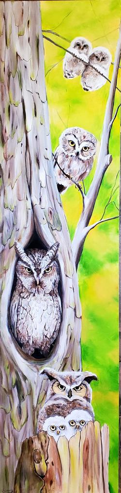 Owl Family   SOLD
