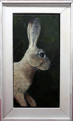 """""""The Bunny"""""""