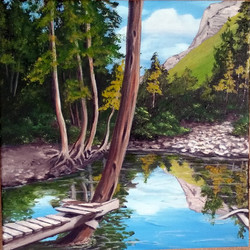 Beaver Pond Dock