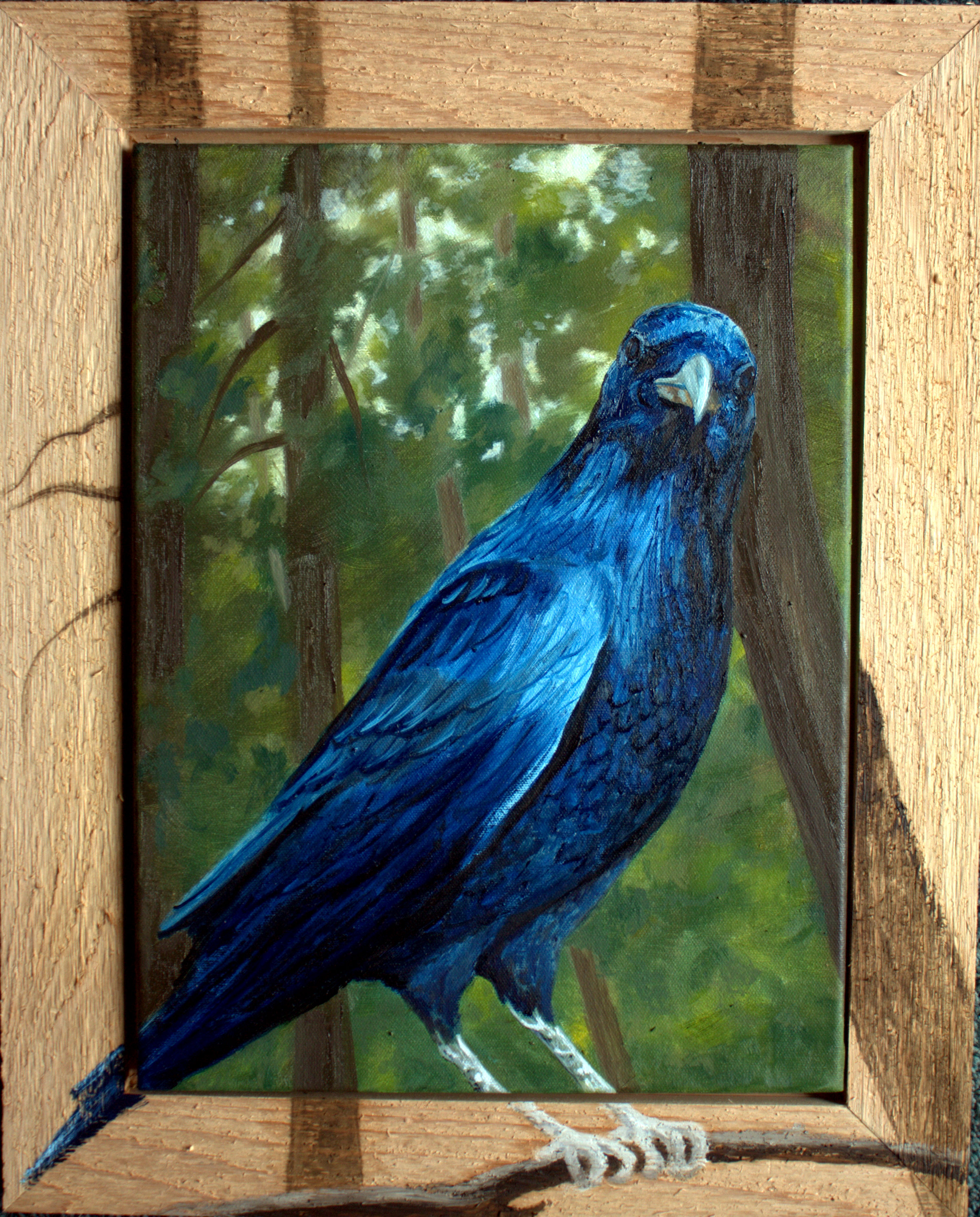Blue Blackbird