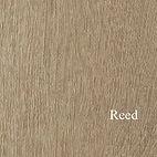 Reed copy.jpg