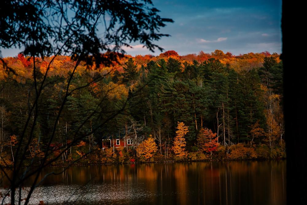 Fall Foliage, trees, red house, blue sky, lake