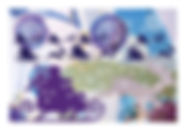 2019-schlitten violett-hirsch haut.jpg